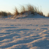 Sand_Rippeln_03_100x100_72dpi.jpg